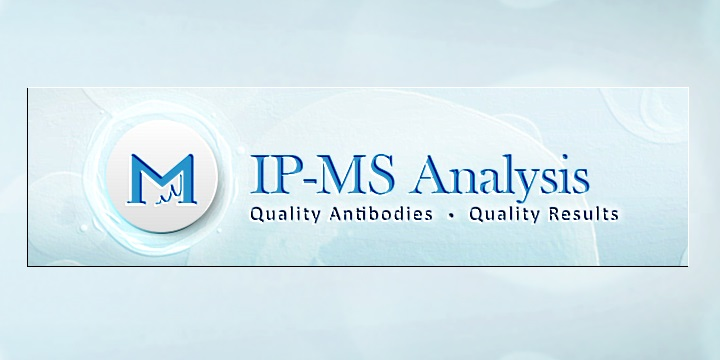 IP-MS Analysis